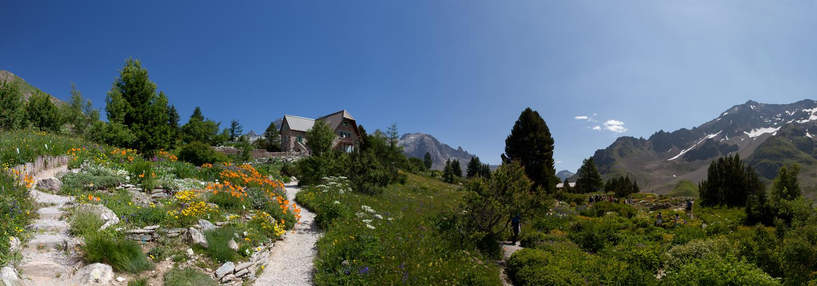 05 Jardin Alpin du Lautaret