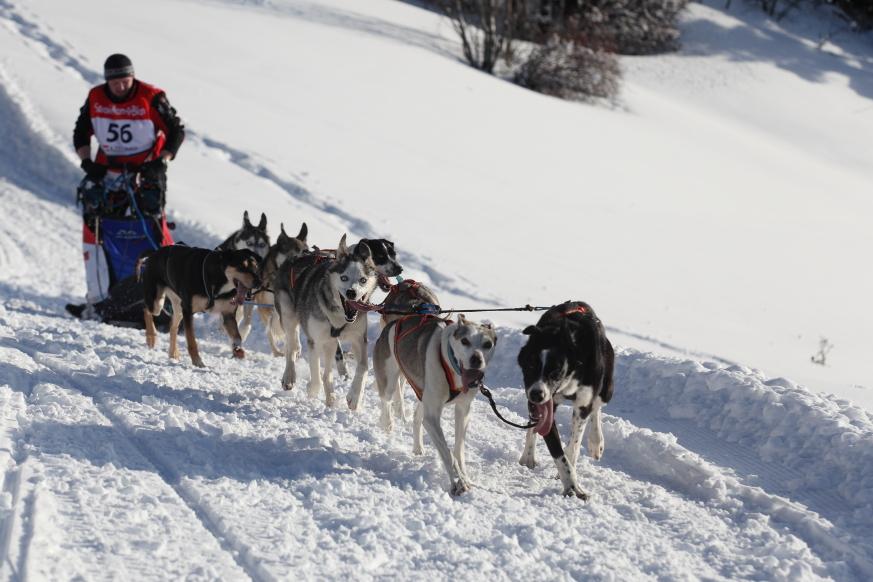 03 La Grande Odyssée  Savoie Mont-Blanc 2014