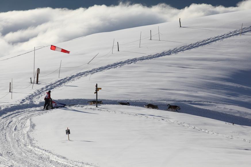 04 La Grande Odyssée  Savoie Mont-Blanc 2014