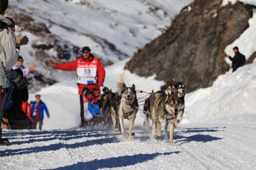 06 La Grande Odyssée Savoie Mont-Blanc 2012