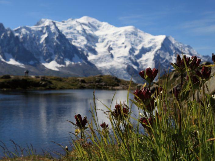 Randonnée au Lac Blanc – Chamonix Mont Blanc